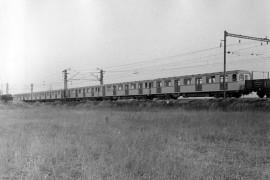 Ečs 81-709