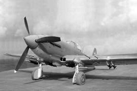 Il-10
